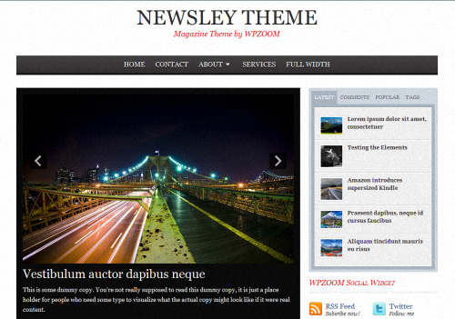 Newsley WordPress Theme