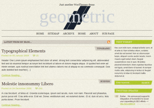 Geometric WordPress Theme