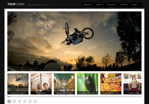 Modularity WordPress Theme