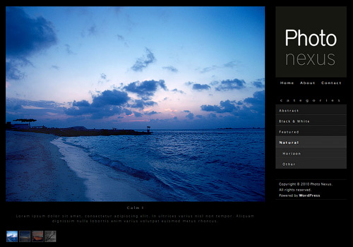 Photo Nexus WordPress Theme
