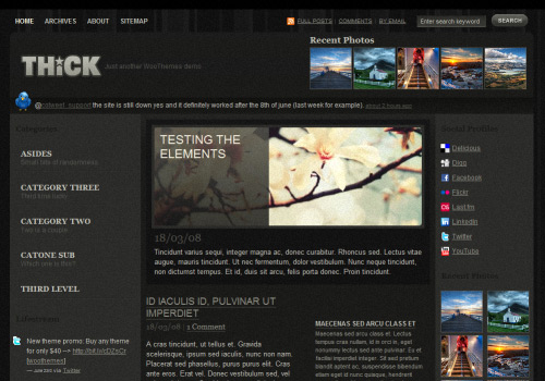 THiCK Ambience WordPress Theme