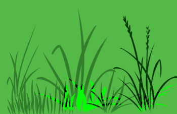 Grass Photoshop Brush