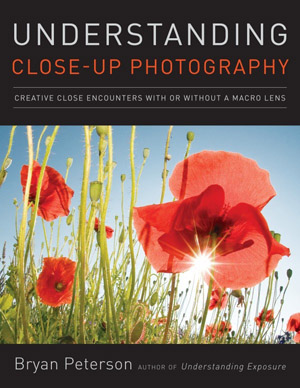 Understanding Close-Up Photography Creative Close Encounters with or Without a Macro Lens