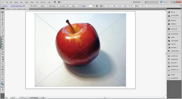 AI Gradient Mesh Tutorial Apple Step 1