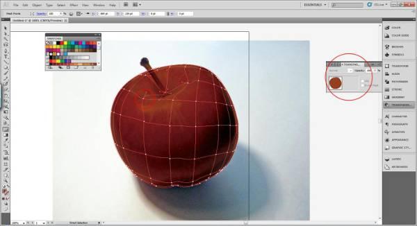 AI Gradient Mesh Tutorial Apple Step 16