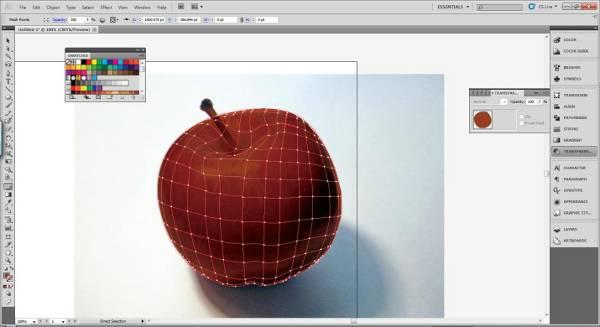 AI Gradient Mesh Tutorial Apple Step 17