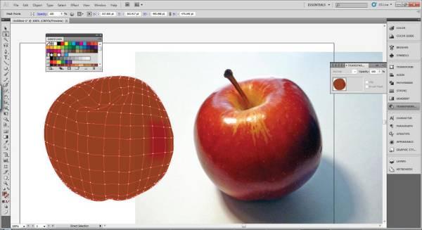 AI Gradient Mesh Tutorial Apple Step 19
