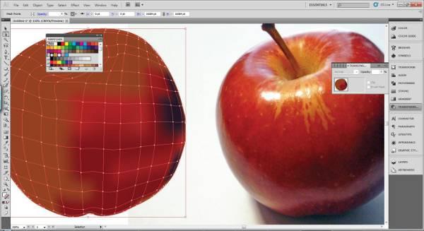 AI Gradient Mesh Tutorial Apple Step 20